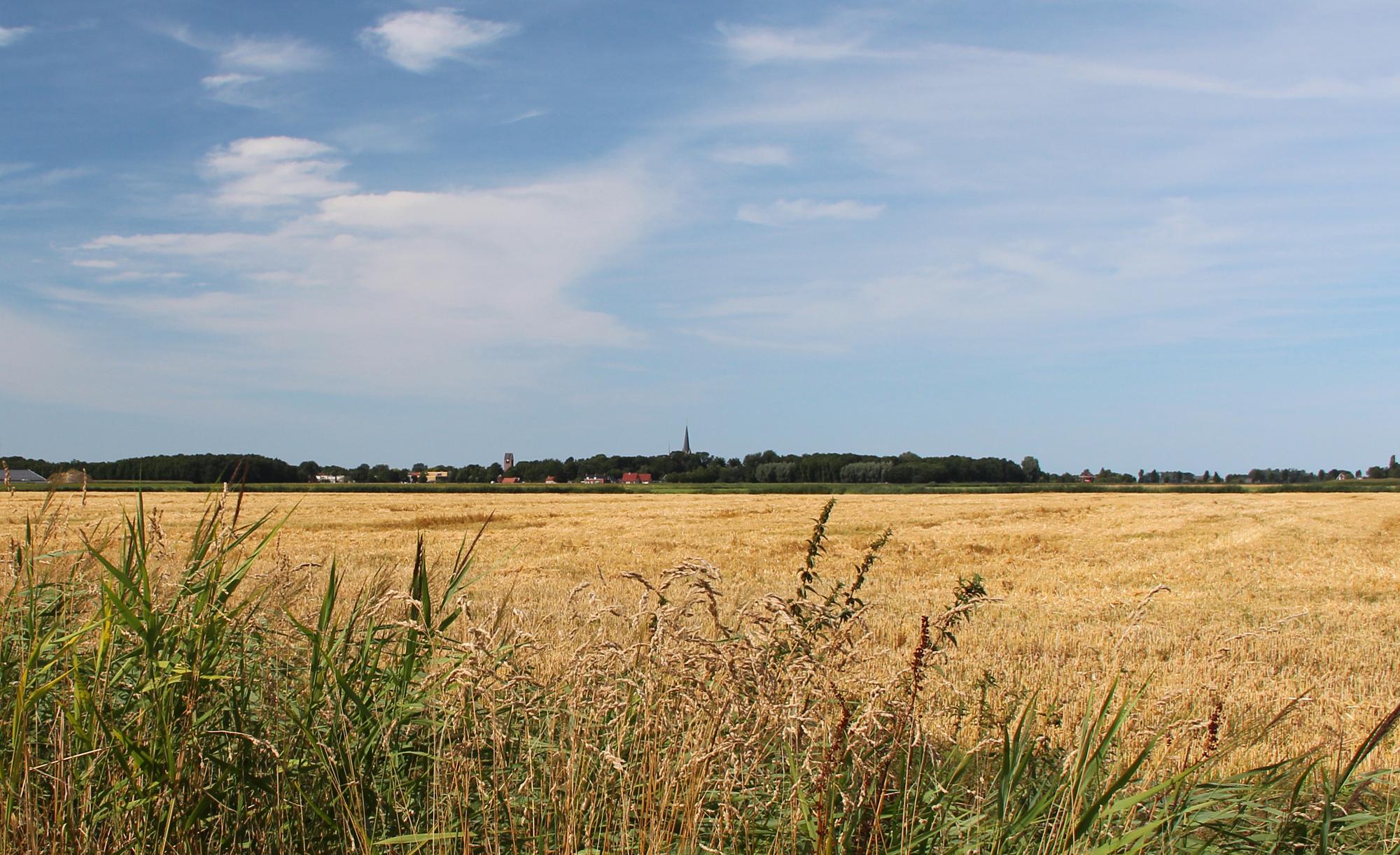 De Horizon Molenrij uitzicht Kloosterburen